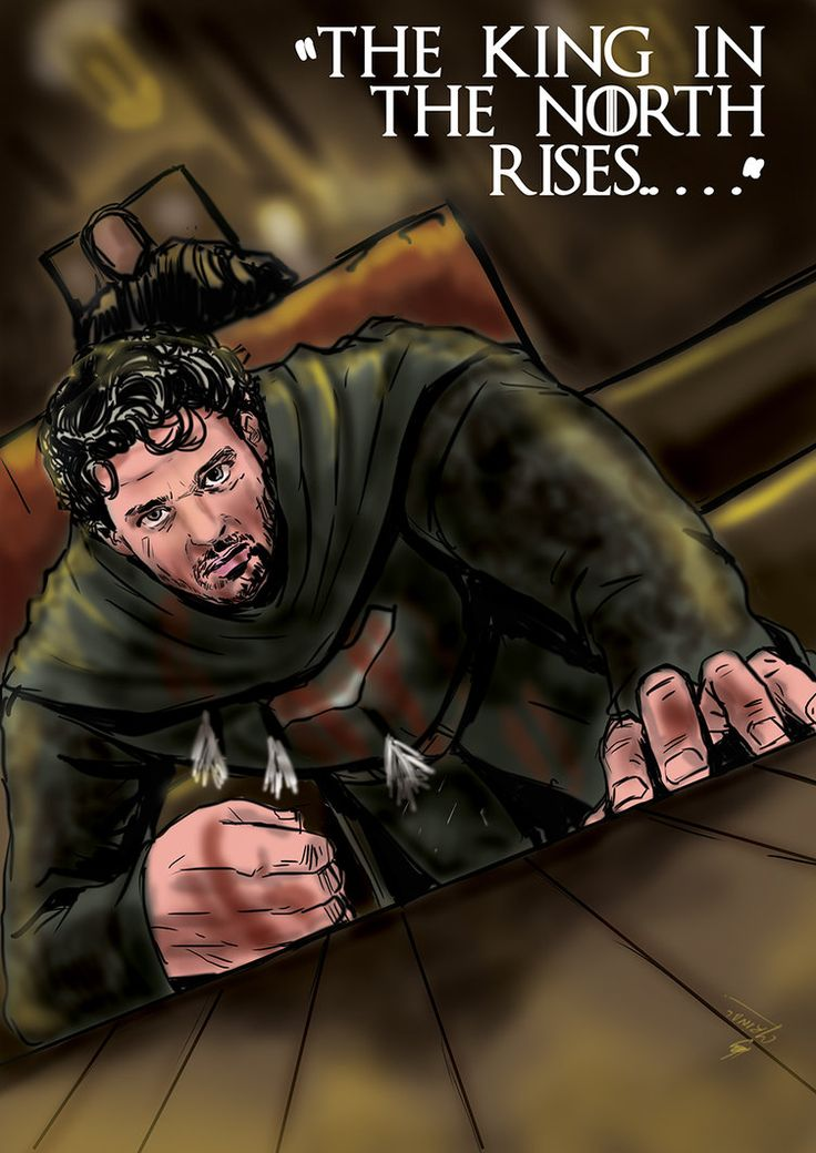 Robb Stark - The king in the north by mrinal-rai