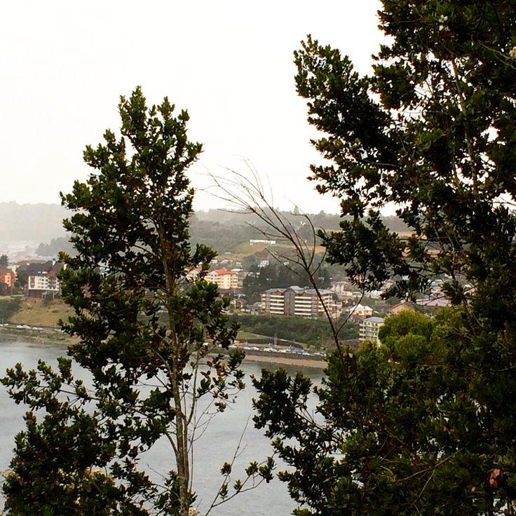 Vista de Puerto Varas y sus Hoteles, desde Cerro Philippi.