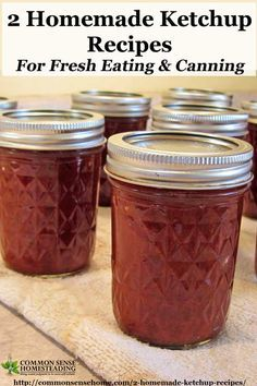2 Homemade Ketchup Recipes - Home Canned ketchup and Lacto-Fermented Catsup - use your garden or farmers market tomatoes to make ketchup at home.