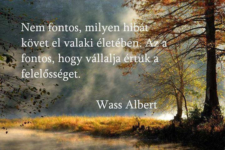 Wass Albert idézete a felelősségről. A kép forrása: DJ FREE # Facebook