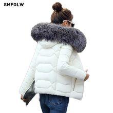 Hot!2017 New Fashion Winter Jacket Women Fake Raccoon Fur Collar Winter Coat Women Parkas Warm Down Jacket Female outerwear(China)