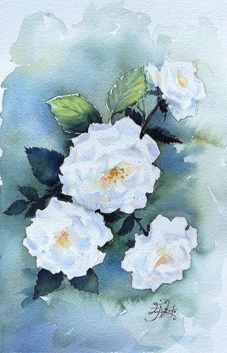 Edyta Nadolska Watercolor Art - 'Schneewittchen Rose'
