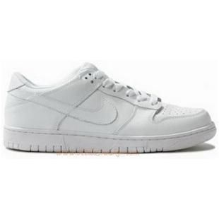 317813 111 Nike SB Womens Dunk Low All White K04018