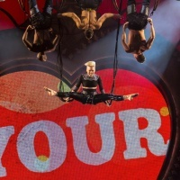 Pink | GRAMMY.com: Photos, Lady Loves, Pink