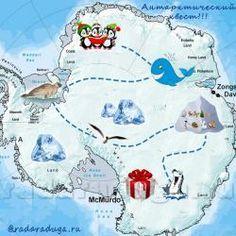Антарктический квест | РадаРадуга - Радуга Идей