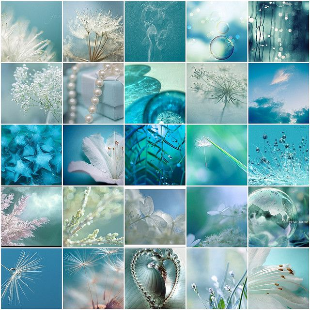 aqua collage (by LHDumes@flickr)