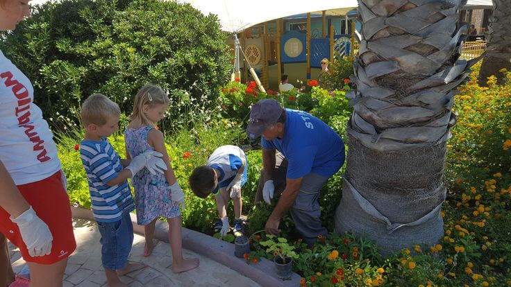 With the help of our little friends we planted some new flowers at the garden of Esperides Beach!