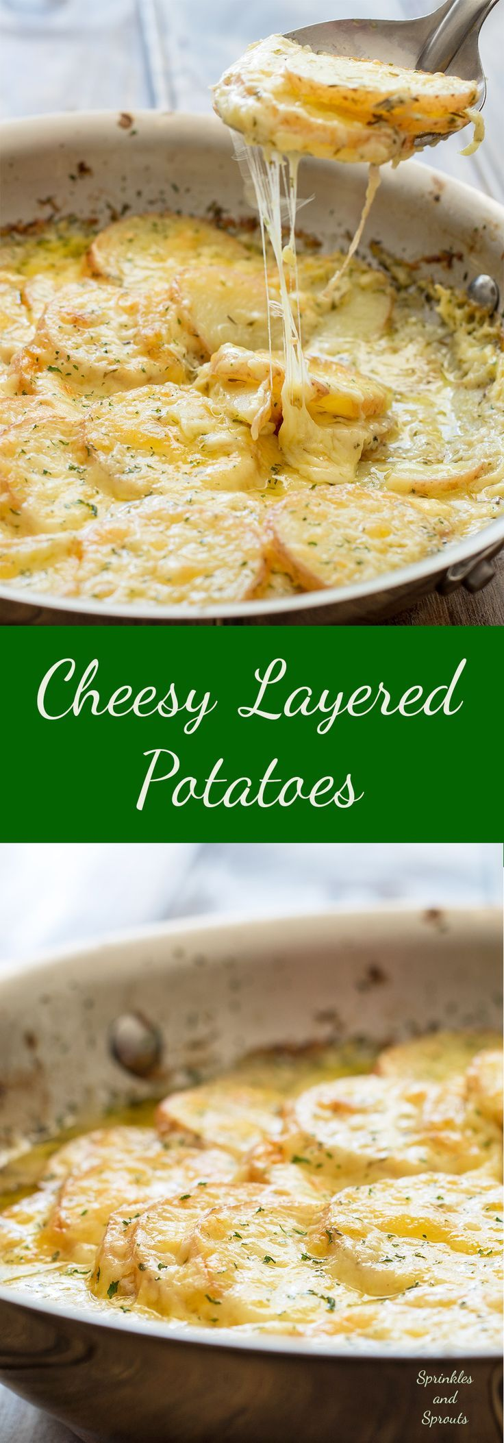 Cheesy Layered Potatoes. Potatoes, cream and cheese. Seriously what could be better? Layers of potato and onion cooked in cream and stock until tender and then smothered in cheese and baked to a melty, creamy perfection. This is comfort food at it's very best! | Sprinkles and Sprouts
