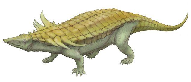 The link Crocodile, Desmatosuchus (1920) Phylum : Chordata Class : Reptilia Order : Aetosauria Family : Stagonolepididae Subfamily : Desmatosuchinae Genus : Desmatosuchus Species : D. spurensis, D. smalli, D. haplocerus • Late Triassic (228 - 203,6...