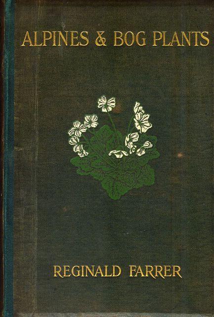 Alpines and Bog Plants, 1908.