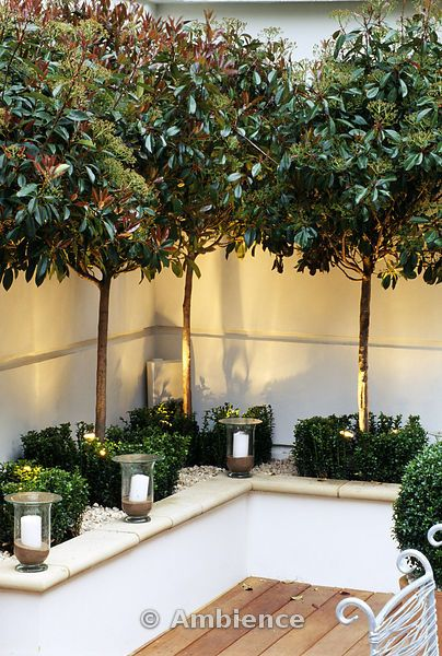 White raised bed, glass Candle Holders, clipped boxwood, up lighting, and white Gravel.