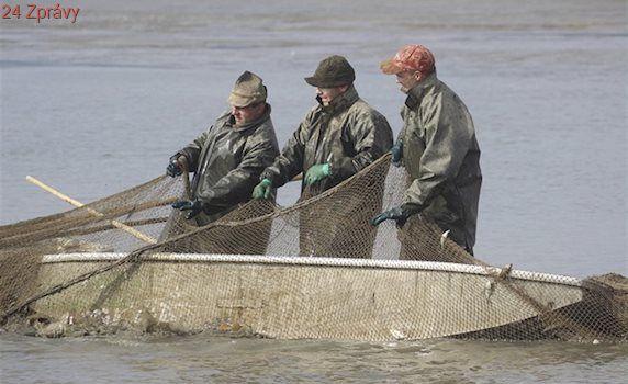Jarní výlovy v kraji začínají. Rybáře po tání sněhu těší nádrže plné vody
