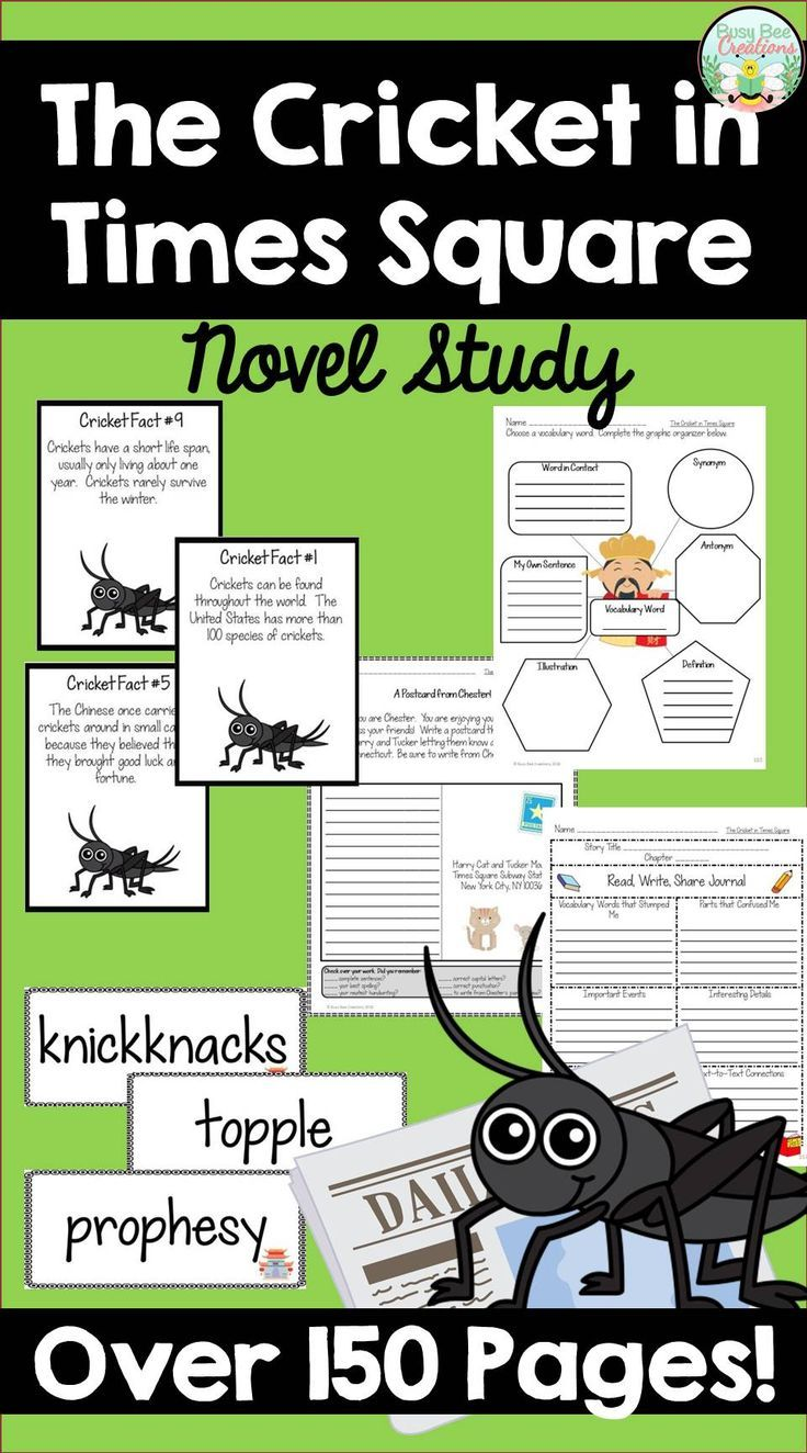 Pin By Amber Kotzin Tpt On School Is Cool Cricket In Times Square Teaching Literature Book Study