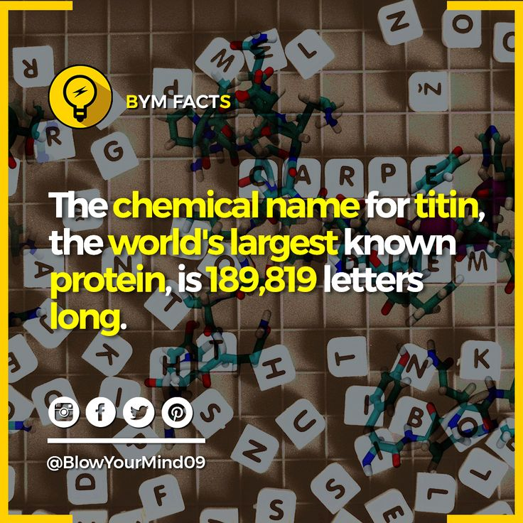 Chemical name of titin, the largest known protein is the longest word in English. Its a giant protein which functions as a molecular spring which is responsible for the passive elasticity of muscle. Enjoyed the post consider sharing👇👇👇👍👍👍 and drop a like👍👍👍.  Knowledge Increases By Sharing.😊😊😊