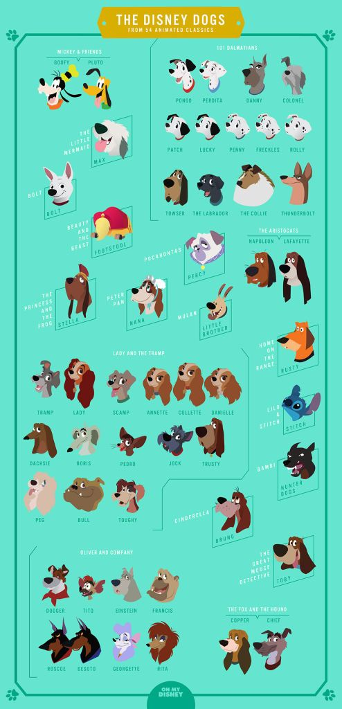 There's nothing better than a Disney dog. Not only are they as cute and cuddly as the real things, but in a lot of cases they can talk. Literally the stuff of our childhood dreams. To honor the pups that have graced our screens during many a Disney movie viewing, we decided to make a chart of featuring all of them, in celebration!