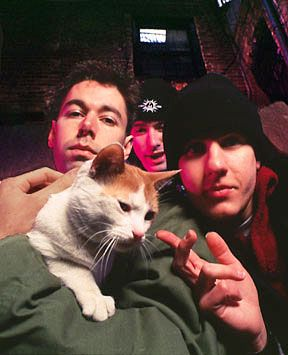 The beastie boys with kitty