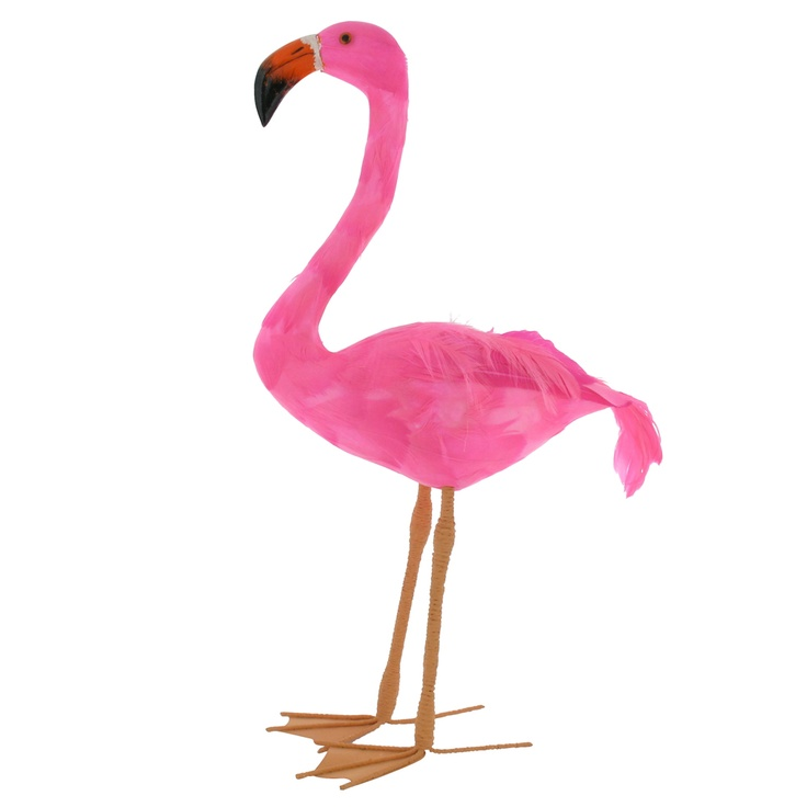 "pink flamingo essay analysis In the essay entitled ""the pink flamingo: a natural history"" by jennifer price,  price examines the popularity of the well-known pink flamingo and how it relates  to."