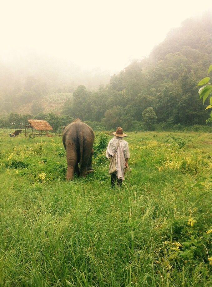 Hill tribe, Chiang Mai, Thailand