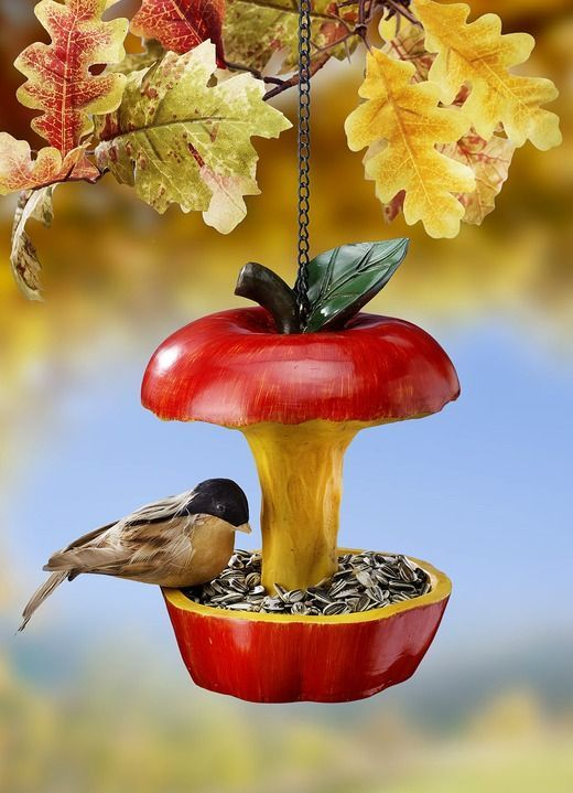 Feeding place in the form of an apple. Easy bird life