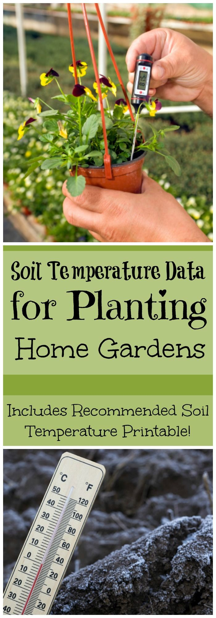 Soil Temperature Data | How to Measure Soil Temperature for Home Garden | Garden Planting | Home Gardens | Farm and Garden