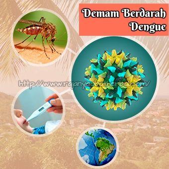 Pertolongan Pertama Pada Penyebab Demam Berdarah Dengue