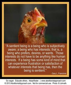 why #vegan not wanting to eat sentient beings; a sentient being is ... ~courtesy Gary Francione – More at http://www.GlobeTransformer.org