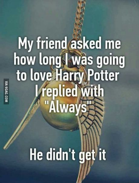 Harry Potter                                                                                                                                                     Más