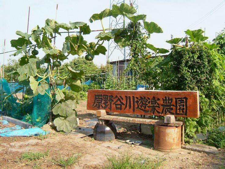袋井市 (Fukuroi City) in 静岡県
