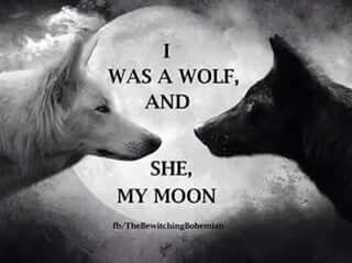 "Celtic.. I was a wolf, and she, my moon <3. ""Every Night I howl to her, hoping she hears me. I see her, full and brightly lit! Even when she's dark and hides herself from me. During the day I am bleak and indifferent while I am away from her. But when I see her in the night sky, I feel strong, primal, and intoxicated by my lust for her. I want to hunt her, track her by pure scent, then devour her from the inside out. Making the heavens jealous with our passion. ♋️❤️♉️"