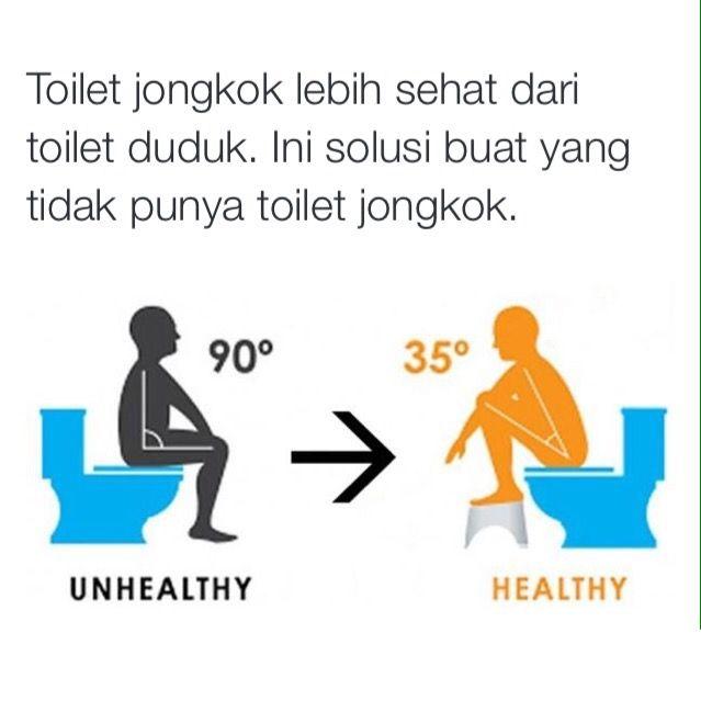Toilet jongkok lebih sehat dari toilet duduk