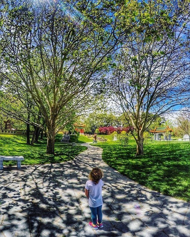 What's your favourite park in Canberra? Instagrammer @danniellebryant_ shared this gorgeous photo of Canberra Nara Peace Park within Lennox Gardens on the shores of Lake Burley Griffin. The park is known for its Japanese-themed garden, gazebo, stone lanterns, and a number of iconic cherry blossom trees. The gardens were a gift from the people of Nara to the people of Canberra and celebrate the sister city link between Canberra, Australia's modern capital, and Nara, Japan's ancient capital…