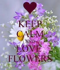 keep calm quotes for girls - Google Search