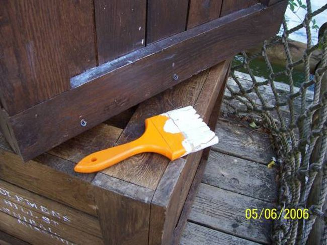 On Tom Sawyer Island, there are a few paintbrushes hidden around the place. If you find one and hand it into the barge driver, they'll give and your party free fast passes for one ride.
