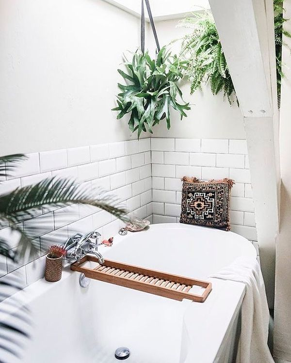 Bathrooms Thatll Convince You To Hop On The Shower Plants Trend