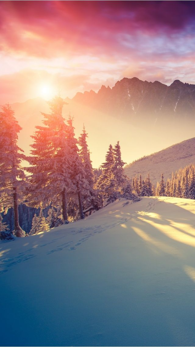 Winter sun - iPhone wallpapers @mobile9