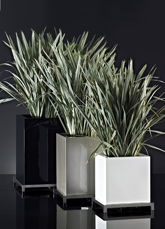 Usona Home Planter