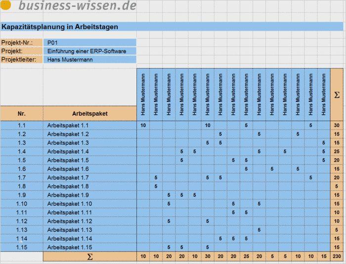 41 Grossartig Kapazitatsplanung Mitarbeiter Excel Vorlage Stilvoll Sie Konnen Anpassen Fur Ihr Excel Vorlage Lebenslauf Layout Vorlagen