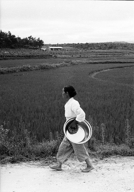 Woman Carrying Brass-Colored Basin, Near Euijeongbu, 1968 | by Homer Williams