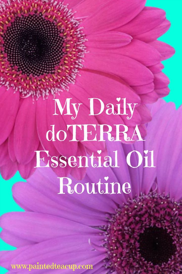 My Daily doTERRA Essential Oil Routine. Find out how I use essential oils everyday! Lemon, DigestZen, Deep Blue, On Guard, Serenity, Balance, Elevation and more!