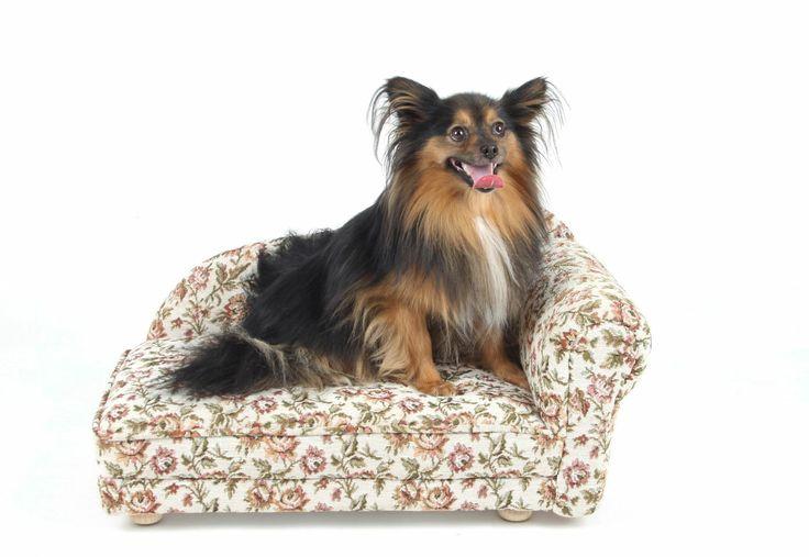 Petbed Hachiko - luxusní pelíšek pro psy jako rohová sofa