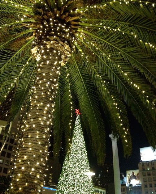 132 best Lighted Christmas Palm Tree Decorations images on ...