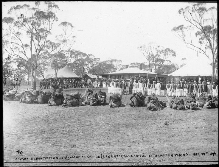 """090470PD: Afghan demonstration of welcome to the Governor to Coolgardie at """"Hampton Plains"""", March 24 1896.  http://encore.slwa.wa.gov.au/iii/encore/record/C__Rb4715150__SAfghan%20demonstration%20of%20welcome%20to%20__Orightresult__U__X6?lang=eng&suite=def"""