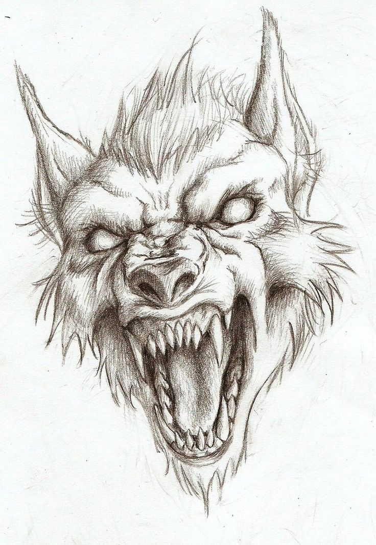 Werewolf head drawing (not my art!)