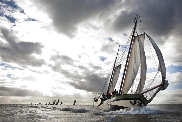 Zeil race. De Brandaris Race 2010.