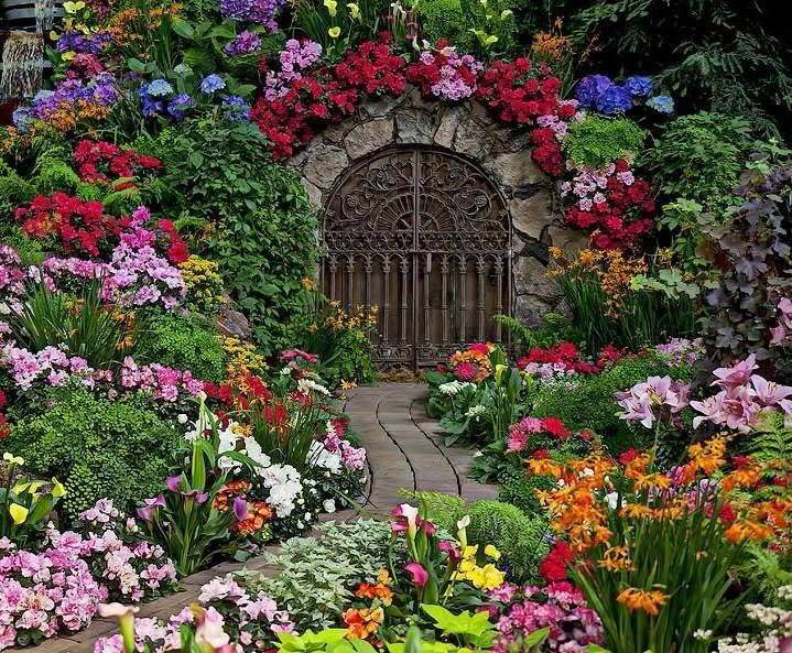 Pinterest Flowers: Welcome Spring!!!
