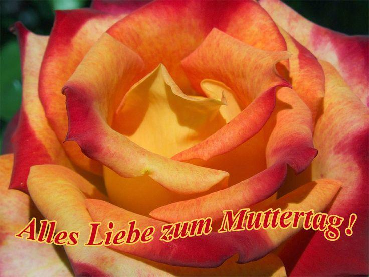 Alles Liebe zum Muttertag! - e-cards
