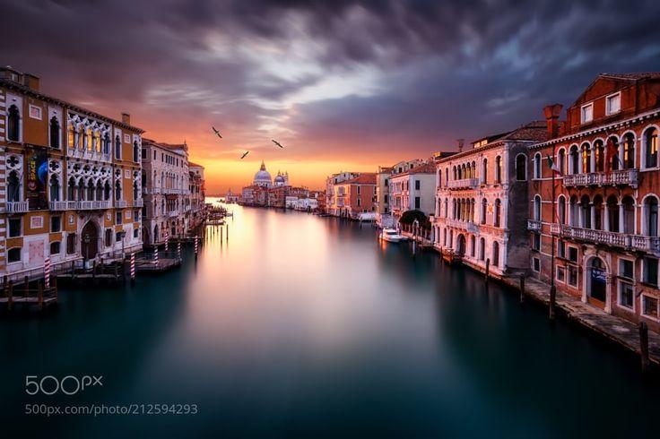 Das Licht des Morgens... by SvenHfner from http://500px.com/photo/212594293 - Dieses Foto entstand am ersten Morgen meiner viertägigen Fotoreise durch Venedig. Es wurde von der berühmten Brücke zur Akademie aufgenommen. Die Brücke bietet den aus meiner Sicht schönsten und auch einzigartigsten Blick auf den Canal Grande sowie die typischen und unverkennbaren Häuserfassaden von Venedig. Dafür ist der Standort von Touristen und Fotografen jedoch nur so überlaufen sofern man morgens nicht…