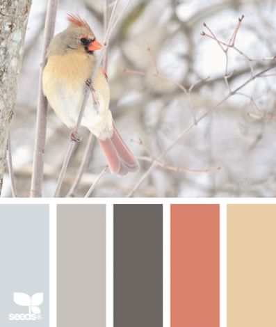 Beautiful paint palette inspired by winter.