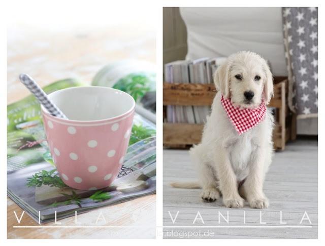 villa vanilla wohnzimmer:1000+ Bilder zu villa vanilla auf Pinterest