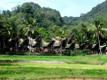 Traditional style houses in South Sulawesi
